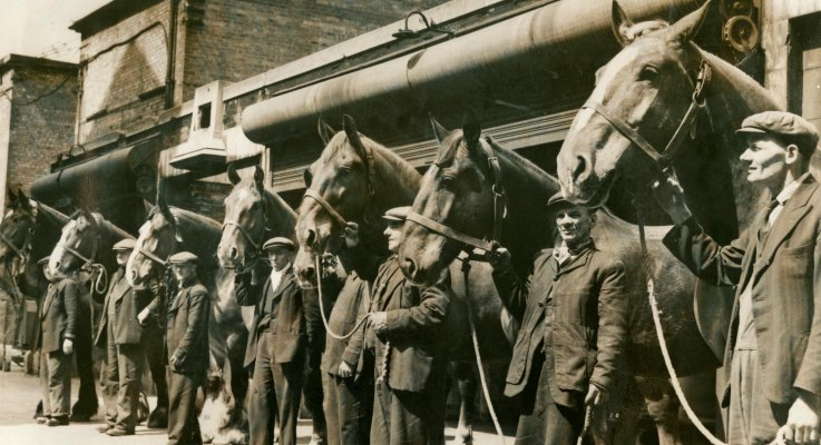 Bermondsey Borough Council Horses 1953